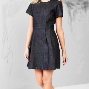 Gap 1969 Denim fit and flare dress